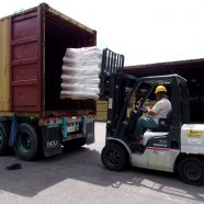Guatemala Loading Saturday, September 8th.